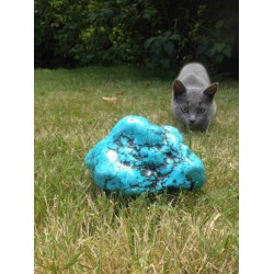 Turquoise Forme Libre 1346g