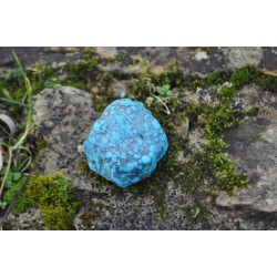 Turquoise Forme Libre 41g